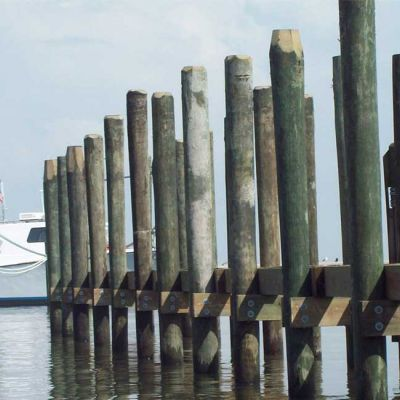 land side view of pilings
