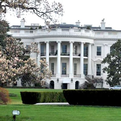 White House Exterior View